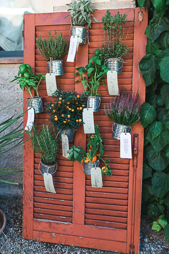 Matrimonio tema piante aromatiche
